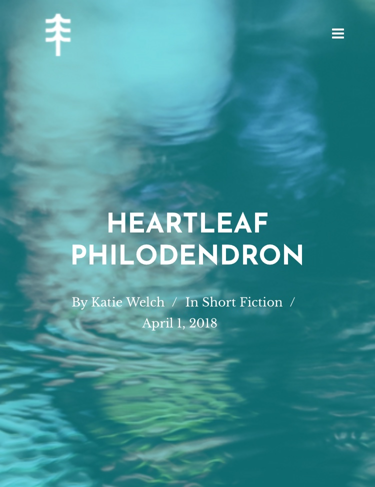 'Heartleaf Philodendron' – story in Longleaf Review